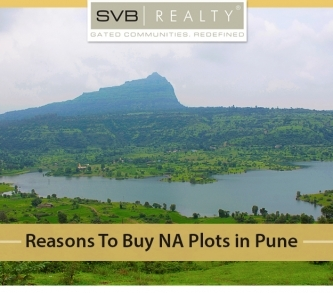 Reasons to Buy NA Plots in Pune