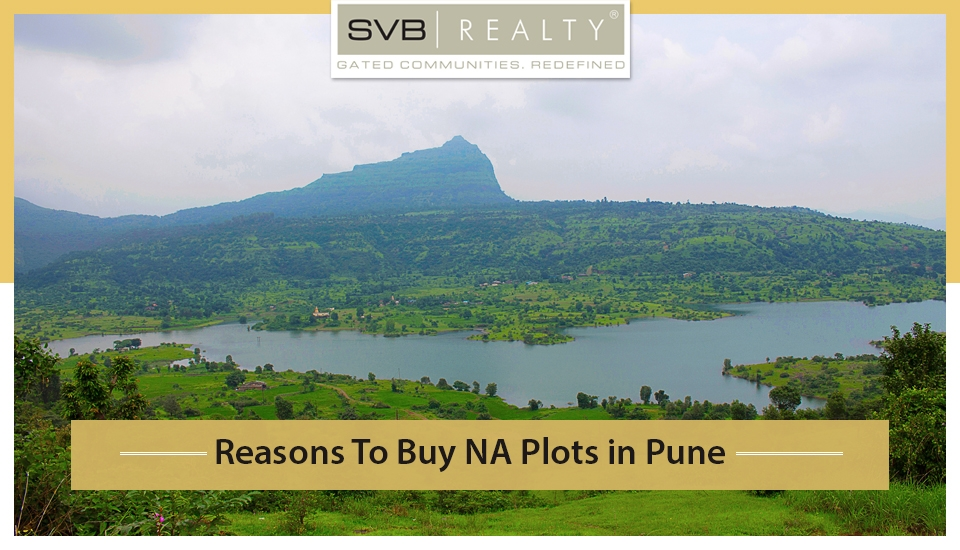 Reasons to Buy NA Plots in Pune